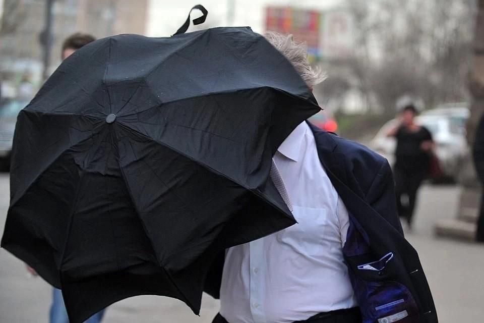 Синоптики предупредили о штормовом ветре в Москве 6 мая 2021