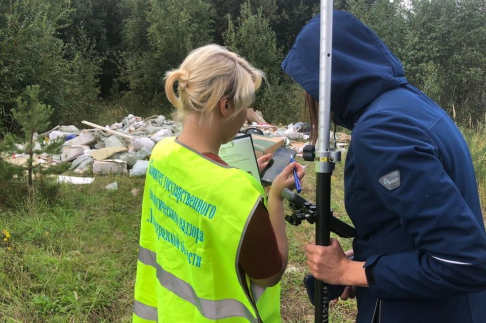 Свалку обнаружили в Колтушском сельском поселении под Всеволожском. Фото: eco.lenobl.ru