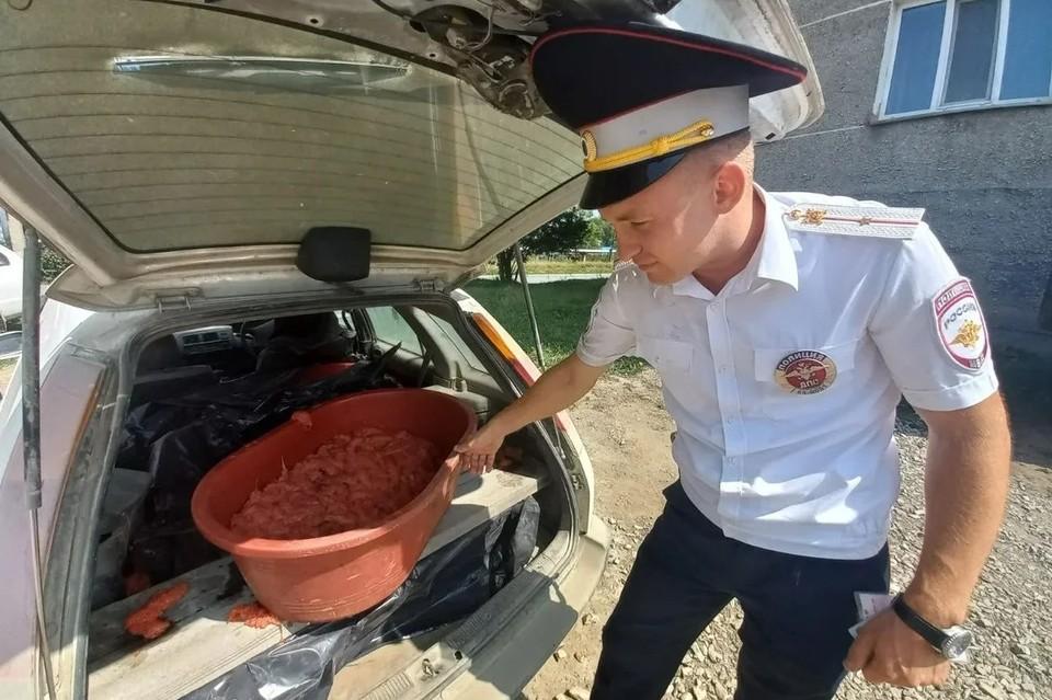 При осмотре автомобиля обнаружена незаконно добытая икра весом 225 килограммов