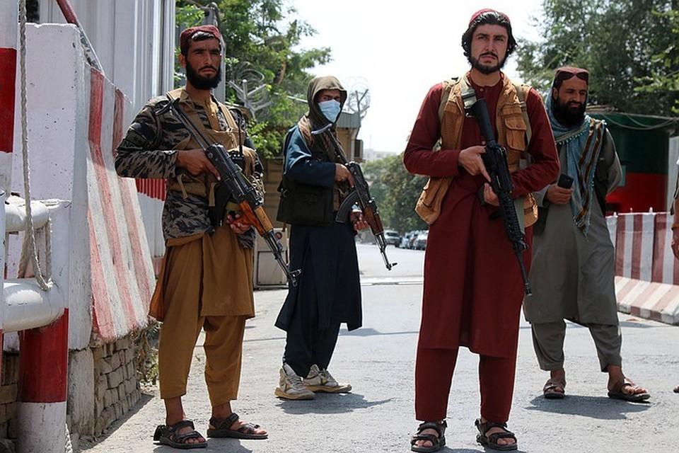 Руководители «Талибана»* пообещали амнистию чиновникам и военным, сотрудничавшим с режимом США на территории Афганистана