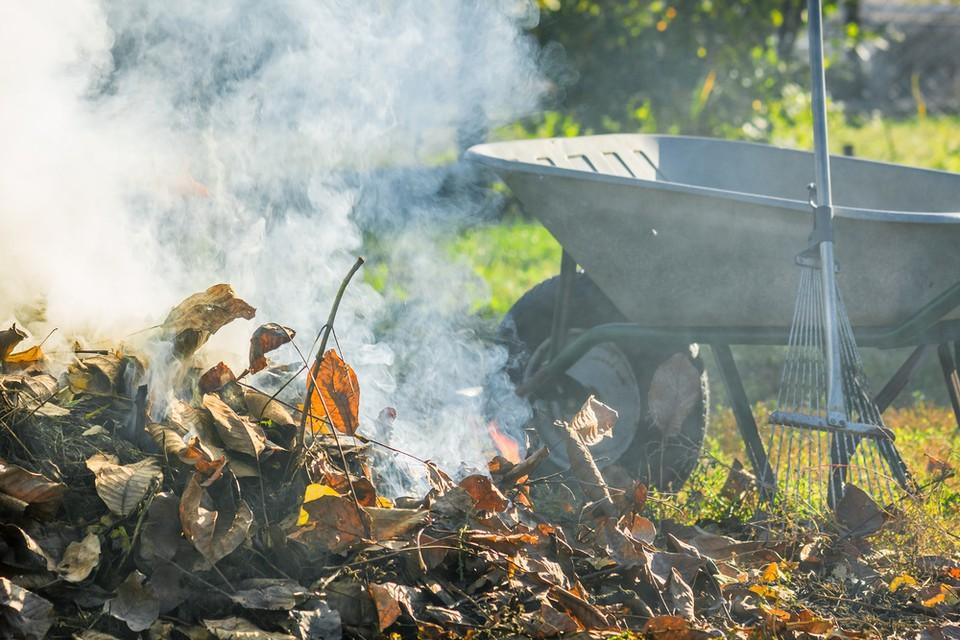 МЧС напомнило дачникам Красноярска о правилах сжигания мусора