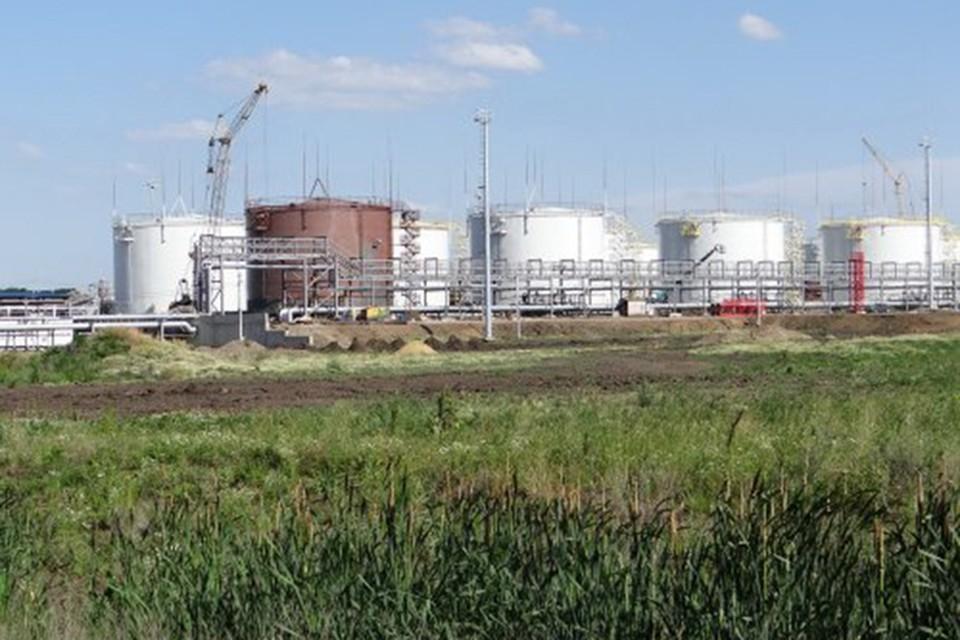 Роспотребнадзор согласился с экологами в том, что завод вредит здоровью человека
