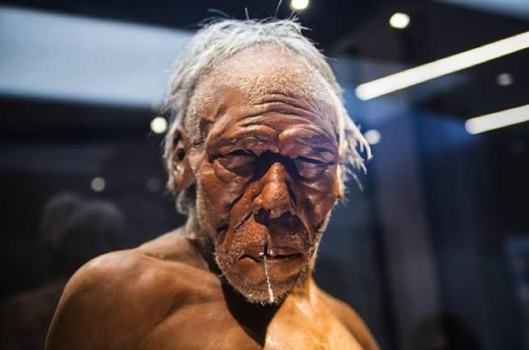 Неандртальцы, по мнению некоторых антропологов, не были жизнерадостными - болезни мучали.